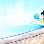 子供のプール熱の症状と治療についてまとめてみた