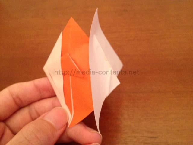 goldfish-19