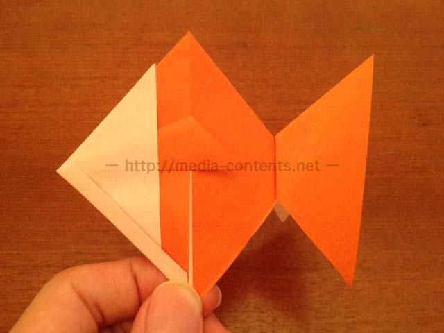 goldfish-21