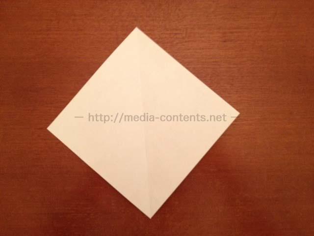 hyperostosis-origami-3