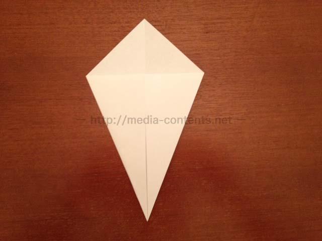 hyperostosis-origami-4