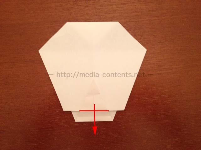 hyperostosis-origami-8